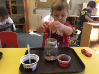 Experimenting with Water and Oil in Ms. Kasey's class